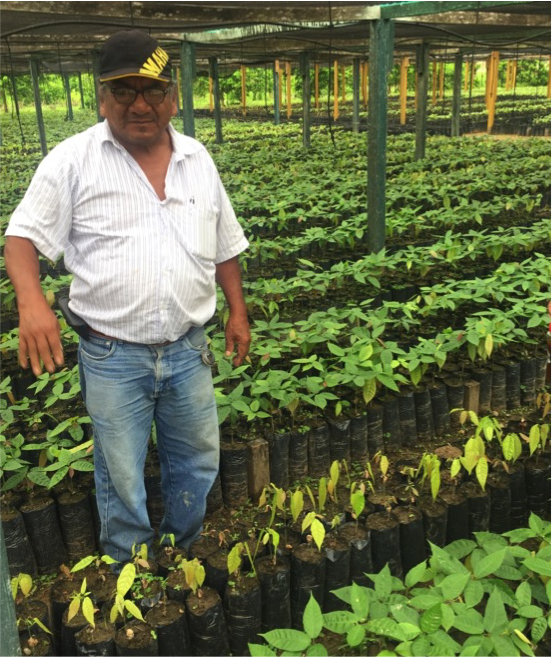One of the nurseries of the programme, with Gilberto, Chief Technical Officer